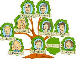 drzewo rodowe